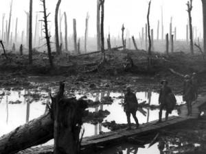 Der Erste Weltkrieg, Urkatastrophe des 20. Jahrhunderts. Wald in der Nähe der flandrischen Stadt Ypern, die direkt an der Westfront lag, nach einem Bombardement (1917).