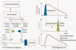 Anreg-Abtast-Spektroskopie. Grafik: AK Wachtveitl