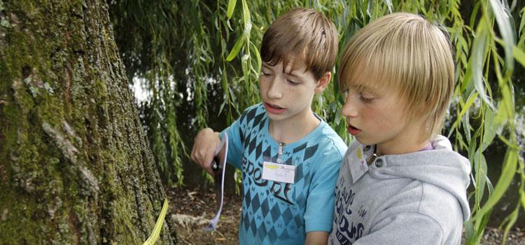 Selbst in die Natur gehen und forschen, das können Schüler zum Beispiel bei den ScienceTours der Goethe-Universität.