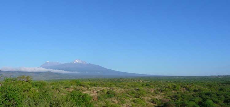 Blick auf das Untersuchungsgebiet des Kilimandscharo-Massivs Foto: Stefan Ferger, Senckenberg