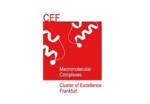 Exzellenzcluster Makromolekulare Komplexe